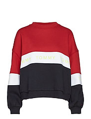TJW COLORBLOCK SWEAT - TOMMY BLACK / MULTI