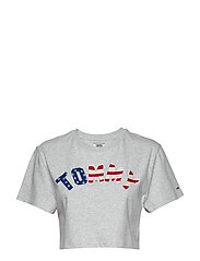 TJW TOMMY US FLAG TE - PALE GREY HTR