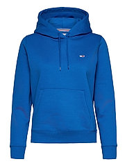 TJW REGULAR FLEECE HOODIE - GULF COAST BLUE
