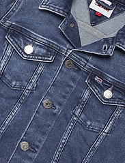Tommy Jeans - VIVIANNE SLIM DENIM TRUCKER NMBS - jeansjackor - nancy mb str - 2