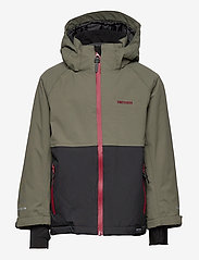 Tretorn - AKTIV COLD WEATHER JACKET - veste rembourrée - 064/field green - 1