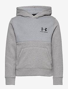 UA Cotton Fleece Hoodie - huvtröja - steel