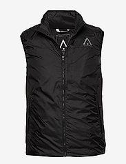 WearColour - ICON Vest - geïsoleerde jassen - phantom black - 0