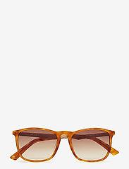 Web Eyewear - WE0154 - okulary przeciwsłoneczne w kształcie litery d - 53p -blonde havana / gradient green - 4