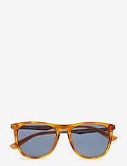 Web Eyewear - WE0160 - okulary przeciwsłoneczne w kształcie litery d - 53v -blonde havana / blue - 4