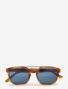 WE0156 - d-shaped - 53v -blonde havana / blue