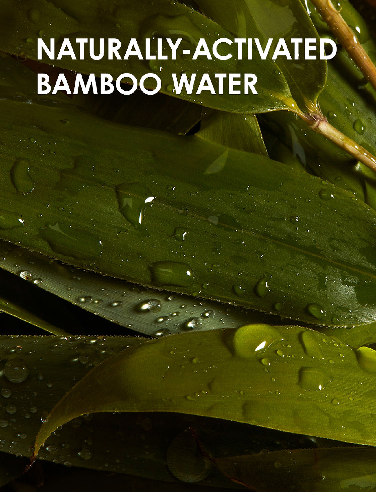 weDo Professional - weDo Professional Light & Soft Shampoo 900ml - shampoo - no colour - 1