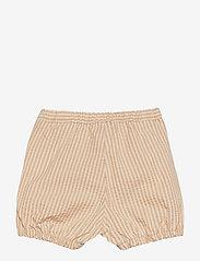 Wheat - Shorts Olly - shorts - taffy stripe - 1
