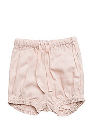 Shorts India - POWDER