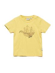 T-Shirt Whale - POMELO