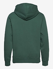 Wood Wood - Ian hoodie - sweats à capuche - faded green - 1