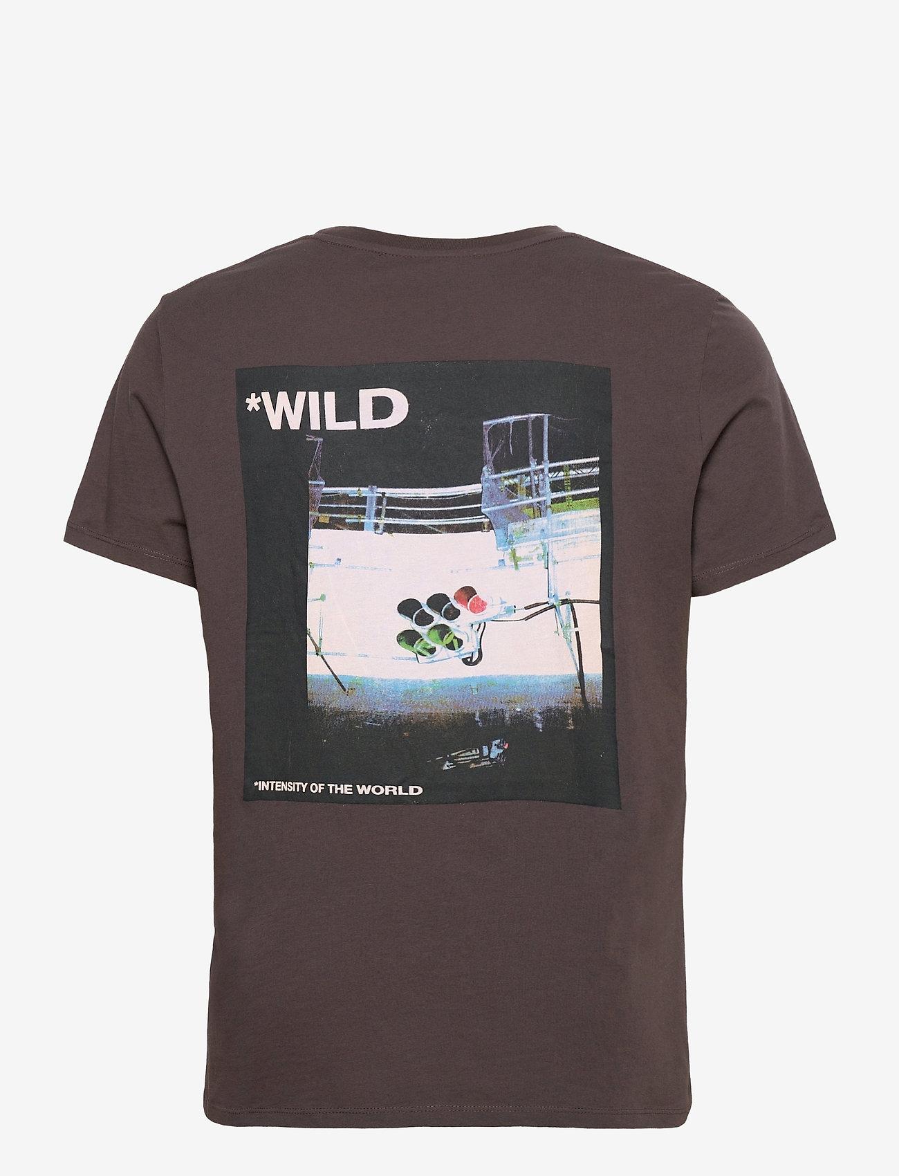 Zadig & Voltaire - TED HC PHOTOPRINT WILD TSHIRT PRINT DOS - basic t-shirts - grey - 1